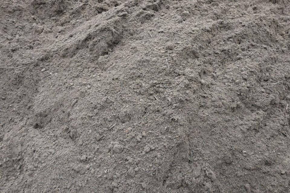 Foto: Aanleg gazon, graszoden